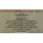 Tisane Gingembre, orange spicy, Salus